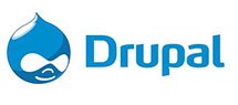 logo drupal - We Build it for you